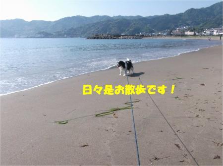 02_convert_20140507181452.jpg