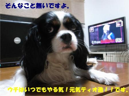 02_convert_20140516190503.jpg