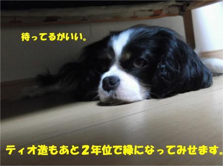 02_convert_20140616173039.jpg