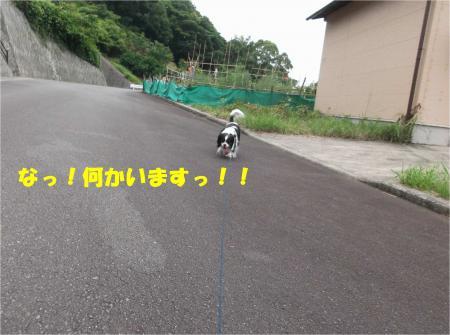 02_convert_20140623160841.jpg