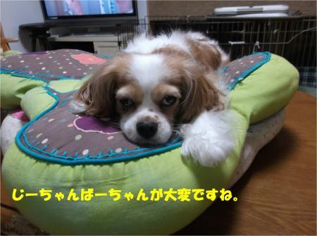 02_convert_20140626181411.jpg