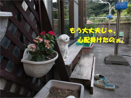 02_convert_20140704174019.jpg