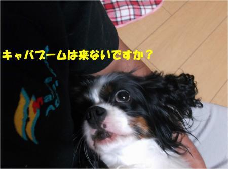 02_convert_20140708172939.jpg