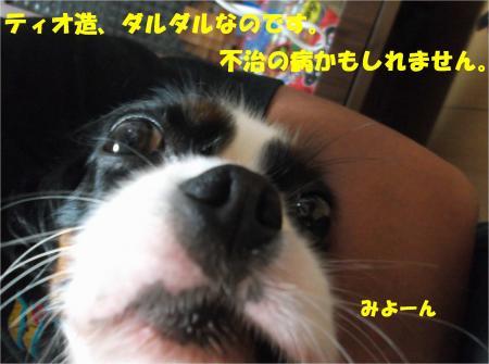 02_convert_20140715181359.jpg