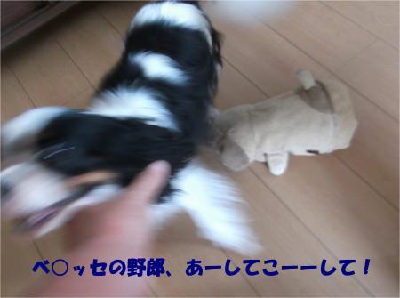 02_convert_20140722174945.jpg