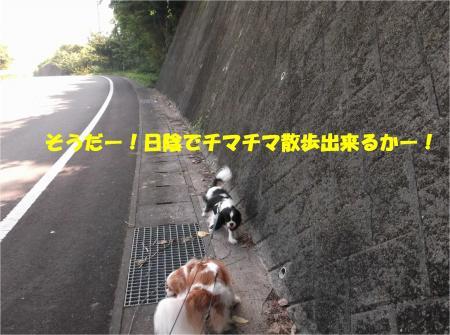 02_convert_20140726150848.jpg
