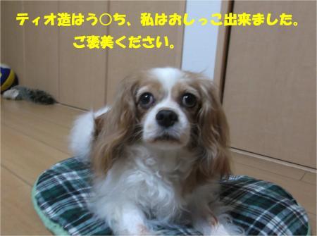 02_convert_20140806180153.jpg