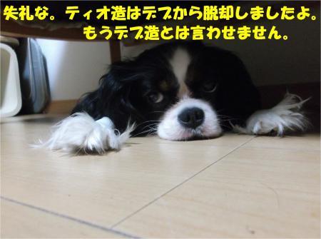 02_convert_20140808180117.jpg