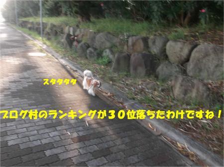 02_convert_20140818171823.jpg