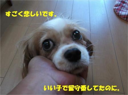 02_convert_20140822180808.jpg