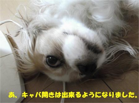 02_convert_20140829181732.jpg