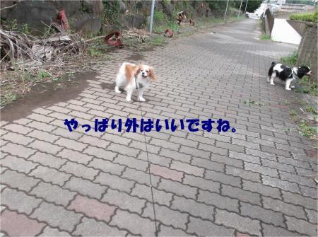 02_convert_20140901175022.jpg