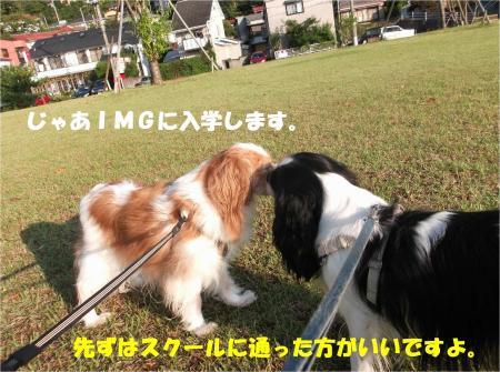 02_convert_20140916182732.jpg