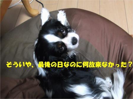 03_convert_20140307171932.jpg