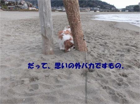 03_convert_20140312173831.jpg