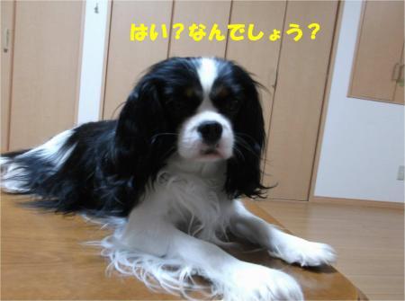 03_convert_20140331181000.jpg