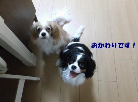 03_convert_20140404192004.jpg
