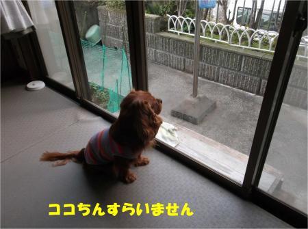 03_convert_20140423181619.jpg