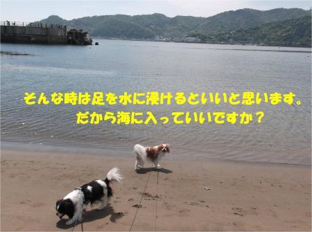 03_convert_20140513182750.jpg