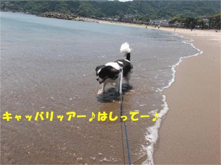 03_convert_20140526173252.jpg