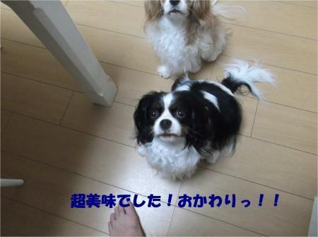 03_convert_20140530190352.jpg