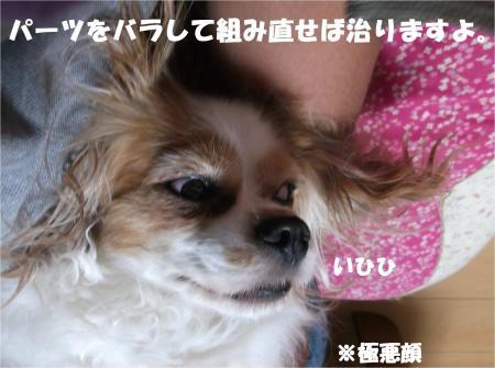 03_convert_20140619182012.jpg