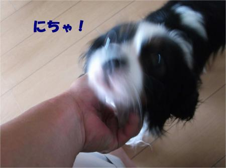 03_convert_20140624185215.jpg