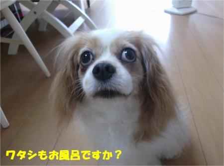 03_convert_20140630180008.jpg