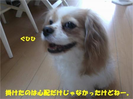 03_convert_20140704174040.jpg