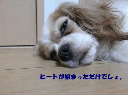 03_convert_20140715181408.jpg