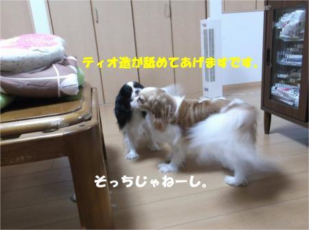 03_convert_20140724181310.jpg