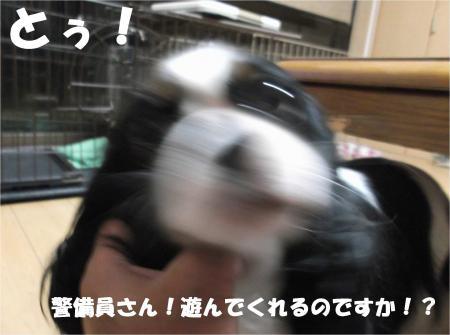 03_convert_20140812201539.jpg