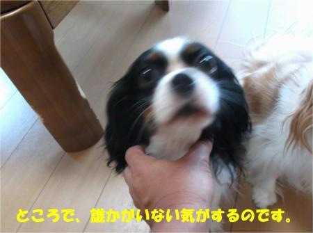03_convert_20140821180229.jpg