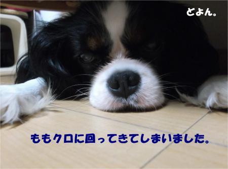 03_convert_20140822180818.jpg