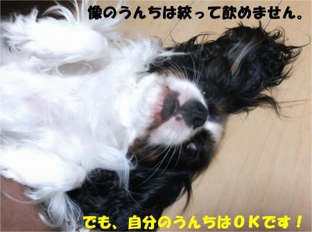 03_convert_20140905174731.jpg