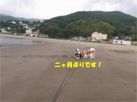 03_convert_20140908174833.jpg