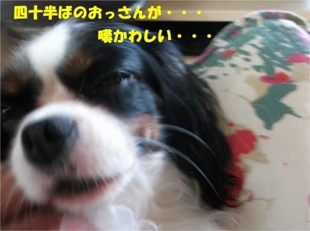 03_convert_20140912173505.jpg