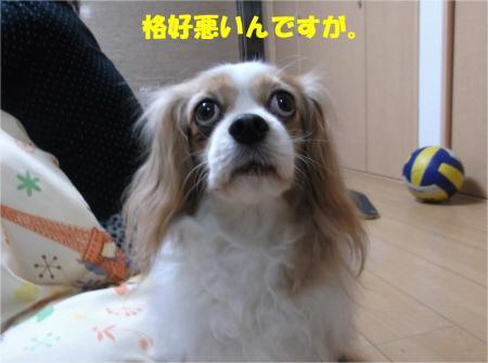 04_convert_20140219174043.jpg