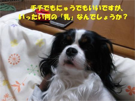 04_convert_20140222143605.jpg