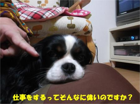 04_convert_20140307171942.jpg