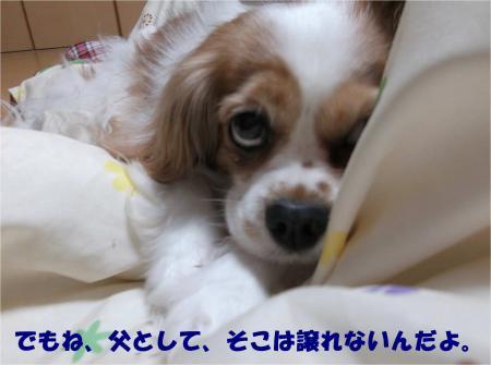 04_convert_20140320184110.jpg
