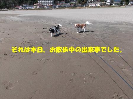 04_convert_20140322130605.jpg