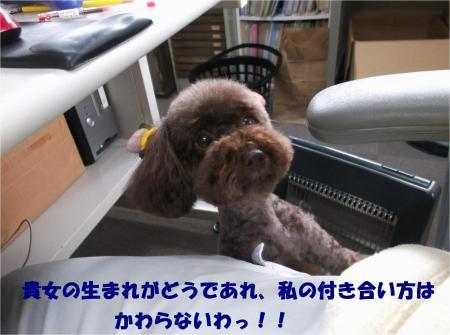 04_convert_20140325191519.jpg