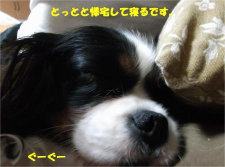 04_convert_20140326180941.jpg
