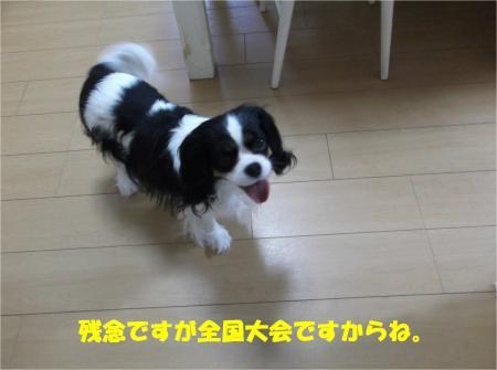 04_convert_20140328180822.jpg