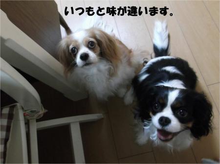04_convert_20140404192012.jpg