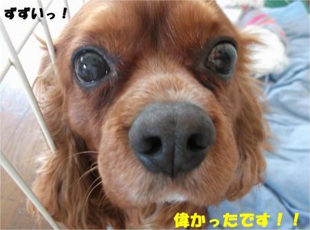 04_convert_20140410164818.jpg