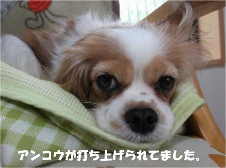 04_convert_20140411181343.jpg