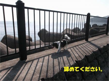 04_convert_20140507181512.jpg