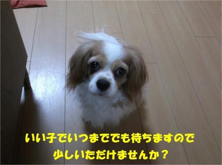 04_convert_20140508192105.jpg